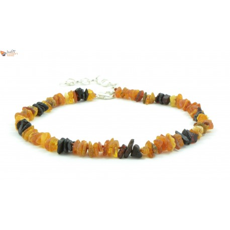 Baltic Amber Pet Neclace