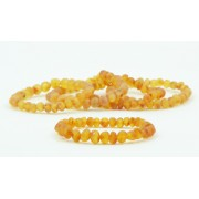Wholesale LOT of 5 Raw Honey Baroque Amber Adult Bracelets
